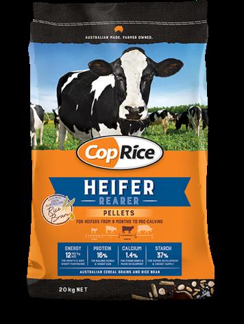 Heifer Rearer