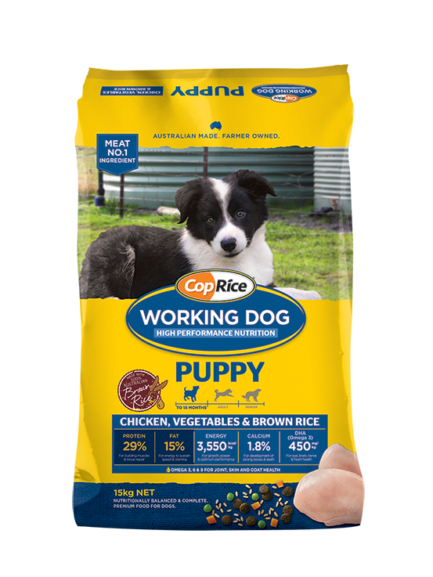 Working Dog – Puppy