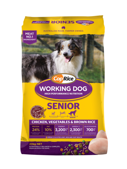 Working Dog – Senior